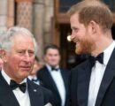 Dad had stopped picking up my phone: Prince Harry's revelation