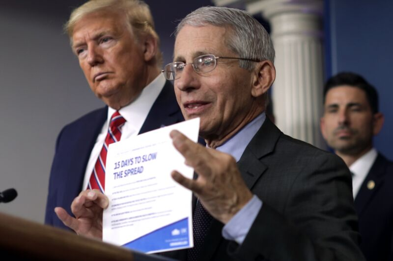 Trump slams Fauci as a 'media creation' in exclusive interview