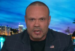 Bongino torches 'liberal intellectuals': They stereotype cops but no one else