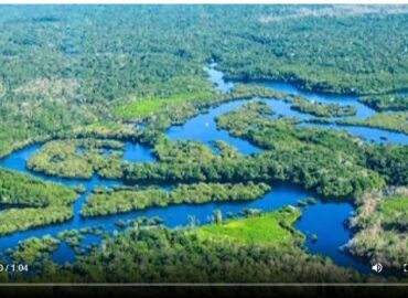 The Amazon rainforest is spewing billions of tons of carbon dioxide